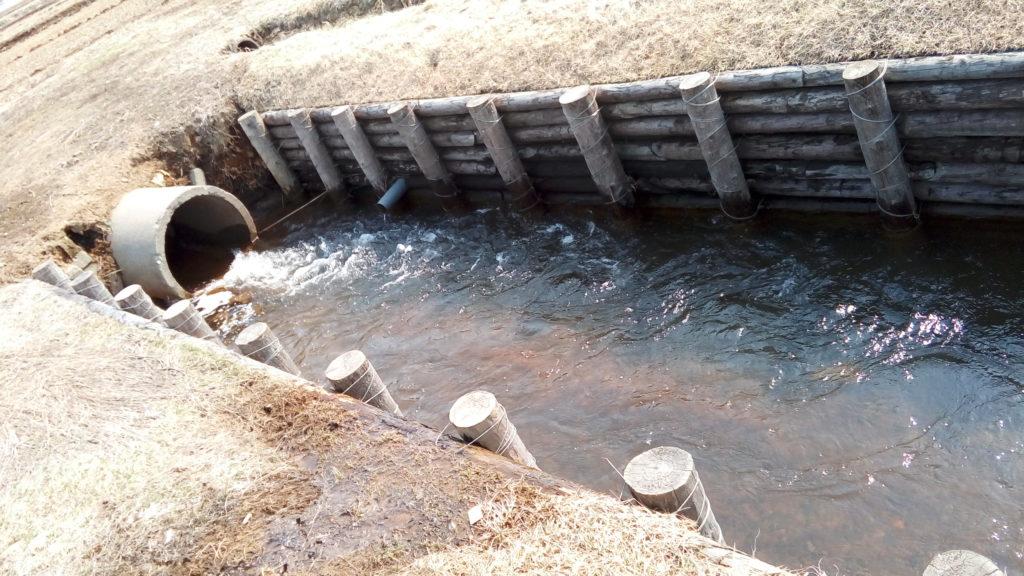 田舎の用水路で魚釣り